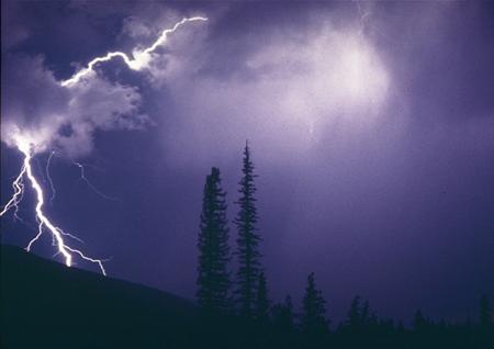 Figure 3. Lightning Strikes Forest. National Interagency Fire Center