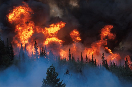 devastating wildfires
